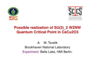 Possible realization of SU(2)_2 WZNW Quantum Critical Point in CaCu2O3