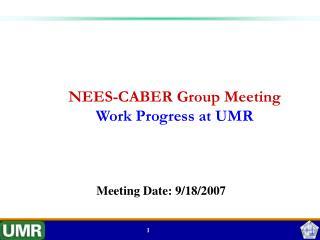 NEES-CABER Group Meeting Work Progress at UMR