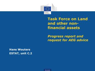 Task Force on Land and other non-financial assets Progress report and request for AEG advice