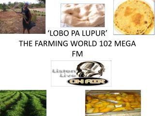 'LOBO PA LUPUR' THE FARMING WORLD 102 MEGA FM by  Amito  Grace