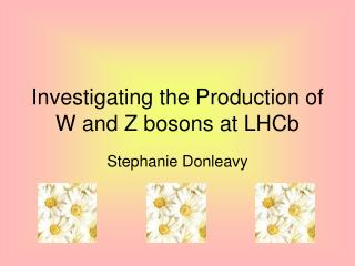 Investigating the Production of W and Z bosons at LHCb