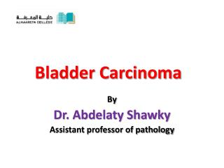 Bladder Carcinoma