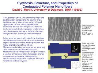Scanning electron micrograph of electrospun polymer fibers (PCL + Poly(ProDOT+))