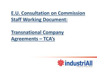E.U. Consultation on Commission Staff Working Document: Transnational Company Agreements – TCA's