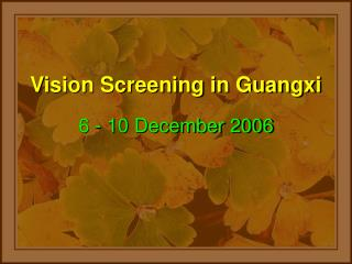 Vision Screening in Guangxi