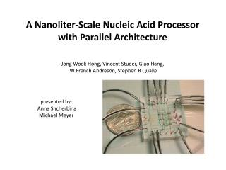 A Nanoliter-Scale Nucleic Acid Processor with Parallel Architecture