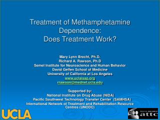 Treatment of Methamphetamine Dependence:  Does Treatment Work?