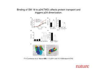 F-X Contreras  et al .  Nature 000 ,  1 - 5  (2011) doi:10.1038/nature10742