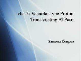 vha-3: Vacuolar-type Proton Translocating ATPase