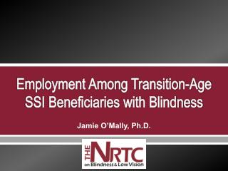 Employment Among Transition-Age SSI Beneficiaries with Blindness