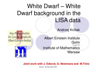 White Dwarf – White Dwarf background in the LISA data