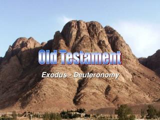 Exodus - Deuteronomy