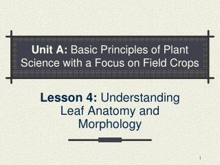 Unit A:  Basic Principles of Plant Science with a Focus on Field Crops