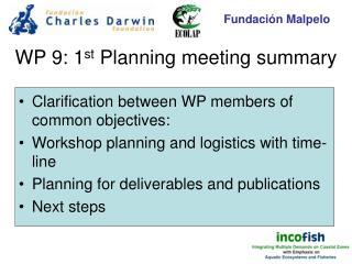 WP 9: 1 st  Planning meeting summary