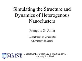 Simulating the Structure and Dynamics of Heterogenous Nanoclusters