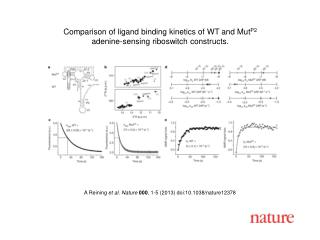 A Reining  et al.  Nature  000 ,  1 - 5  (2013) doi:10.1038/nature 12378