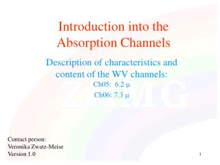 Introduction into the  Absorption Channels