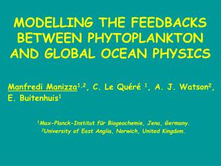 MODELLING THE FEEDBACKS  BETWEEN PHYTOPLANKTON AND GLOBAL OCEAN PHYSICS