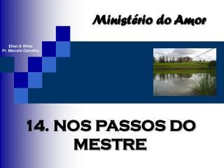 14. NOS PASSOS DO MESTRE