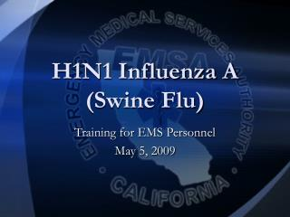 H1N1 Influenza A Swine Flu