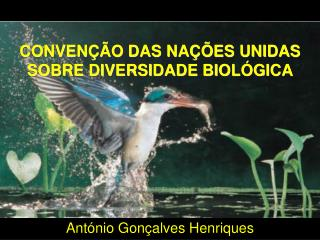 CONVENÇÃO DAS NAÇÕES UNIDAS SOBRE DIVERSIDADE BIOLÓGICA