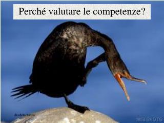 Perché valutare le competenze?