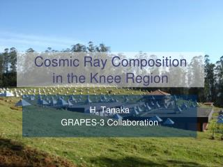 Cosmic Ray Composition  in the Knee Region