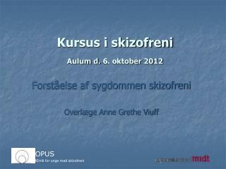 Kursus i skizofreni Aulum d. 6. oktober 2012