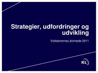 Strategier, udfordringer og udvikling