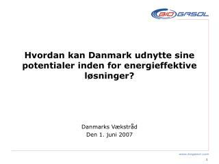Hvordan kan Danmark udnytte sine potentialer inden for energieffektive løsninger?