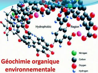 Géochimie organique environnementale