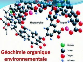 G�ochimie organique environnementale