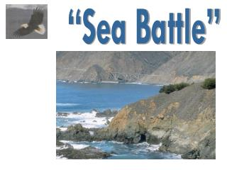 """Sea Battle"""