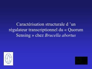 Le ��Quorum Sensing�� des bact�ries  Gram -