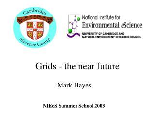 Grids - the near future