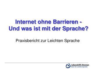 Internet ohne Barrieren -  Und was ist mit der Sprache?