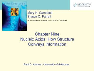 Chapter Nine Nucleic Acids: How Structure  Conveys Information