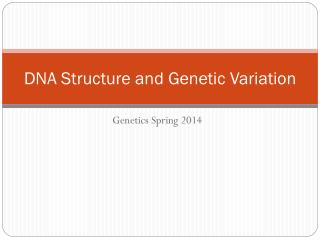 DNA Structure and Genetic Variation