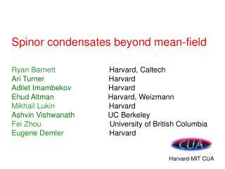 Spinor condensates beyond mean-field