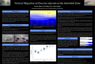 Vertical Migration of  Emerita talpoida  in the Intertidal Zone