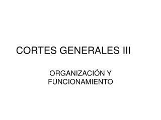 CORTES GENERALES III