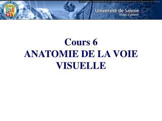 Cours 6 ANATOMIE DE LA VOIE VISUELLE