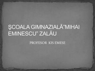 """ŞCOALA GIMNAZIALĂ""""MIHAI EMINESCU"""" ZALĂU"""