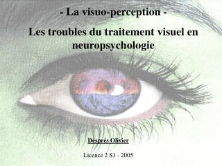 - La visuo-perception - Les troubles du traitement visuel en neuropsychologie