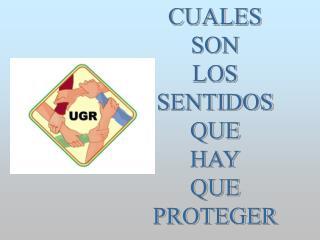 CUALES SON LOS SENTIDOS QUE HAY QUE PROTEGER