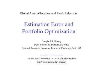 Estimation Error and  Portfolio Optimization
