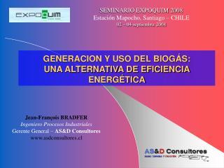 GENERACION Y USO DEL BIOG S: UNA ALTERNATIVA DE EFICIENCIA ENERG TICA