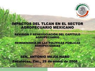 IMPACTOS DEL TLCAN EN EL SECTOR AGROPECUARIO MEXICANO  REVISI N Y RENEGOCIACI N DEL CAP TULO AGROPECUARIO  REINGENIER A