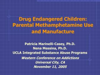 Drug Endangered Children: Parental Methamphetamine Use and Manufacture