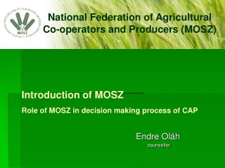 Introduction  of MOSZ Role  of MOSZ  in decision making process  of CAP
